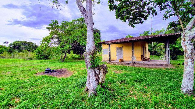 Casa em Aldeia (Chã de Peroba) 100x100 (10.000m²) - Leia o Anúncio - Foto 6