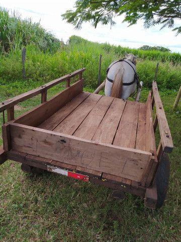 Carroça completa, com cavalo e arreios. - Foto 5