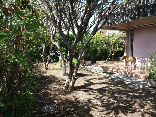 Casa a venda próximo a faculdade dos guararapes Piedade  - Foto 5