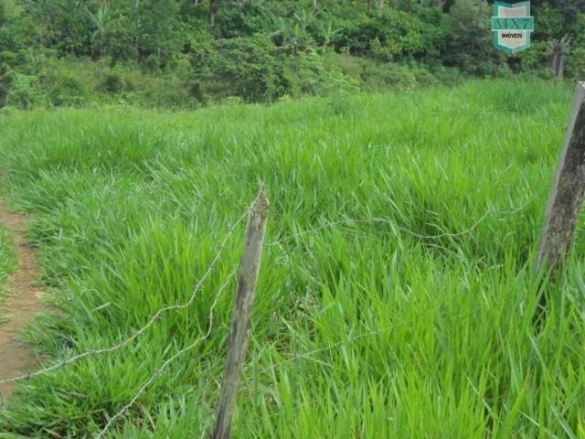 Fazenda Itamaraty com 300 Hectares, potencial para 300 gados, 70 hectares de cacau - Foto 12