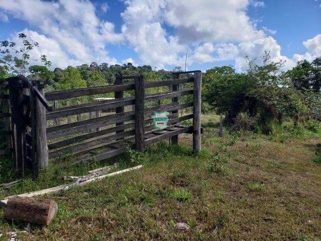 Ubaitaba. Fazenda de oportunidade. São 527 Hectares - Foto 9