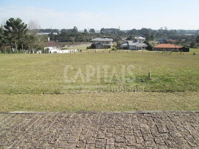 Terreno com 1250m² Campo Largo da Roseira, São José dos Pinhais - Foto 6