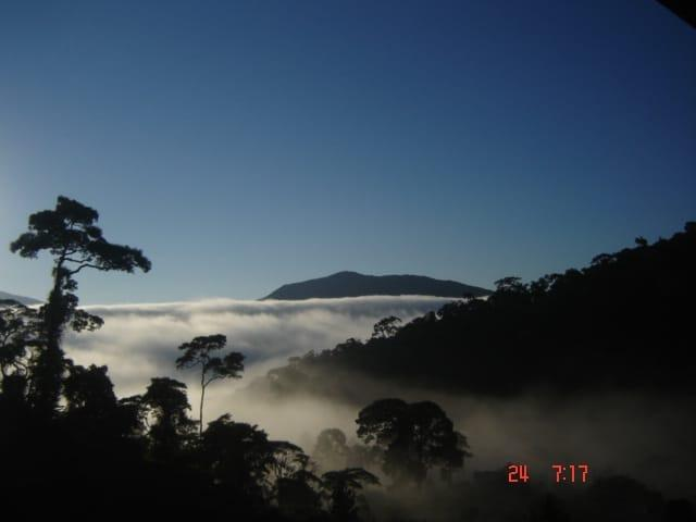 Sítio em Teresópolis - Foto 6