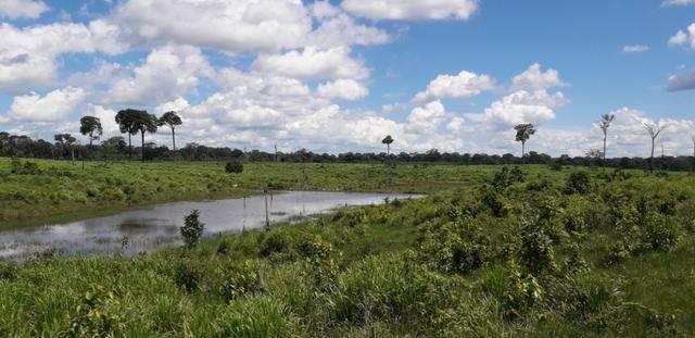 Fazenda em Roraima top - Foto 6