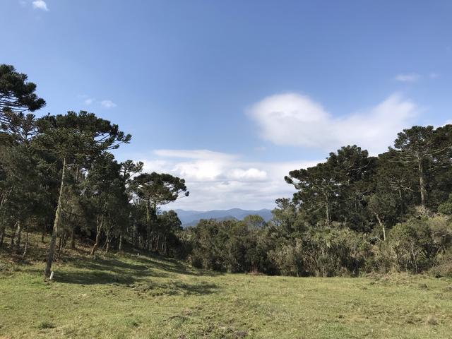 Terreno Urubici - Foto 2