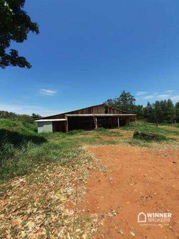 Sítio à venda, 242000 m² por R$ 3.500.000,00 - Rural - Mandaguaçu/PR - Foto 11