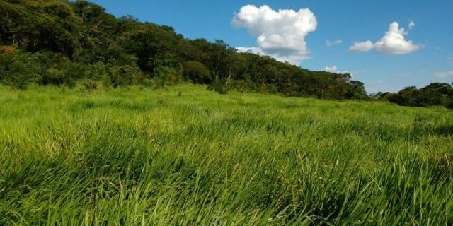 Fazenda - Sítio à venda, Centro - Corinto/MG - Foto 3
