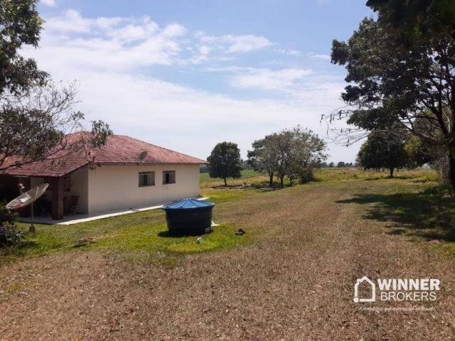 Sítio à venda, 242000 m² por R$ 3.500.000,00 - Rural - Mandaguaçu/PR - Foto 13