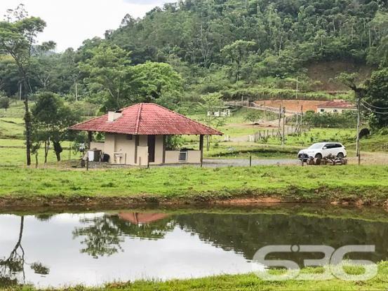 Chácara à venda com 3 dormitórios em Vila nova, Joinville cod:01028884 - Foto 2