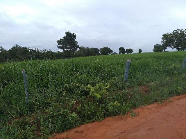 Oportunidade Entrada R$ 1.200.000,00 restante em 05 anos sem juros - planta 300 hectares - Foto 8