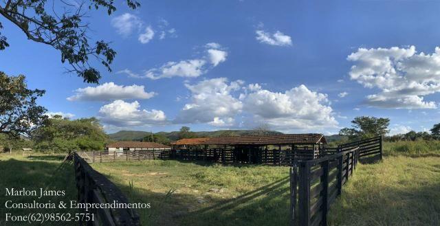 Fazenda em Padre Bernardo! - Foto 2