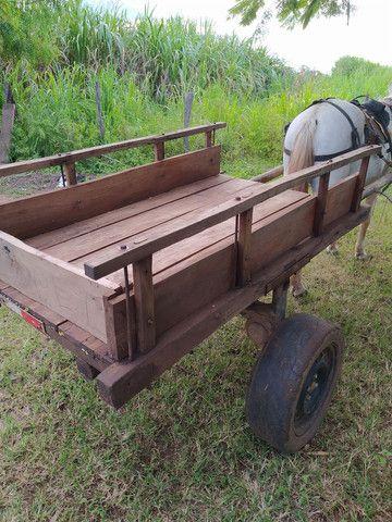 Carroça completa, com cavalo e arreios. - Foto 3
