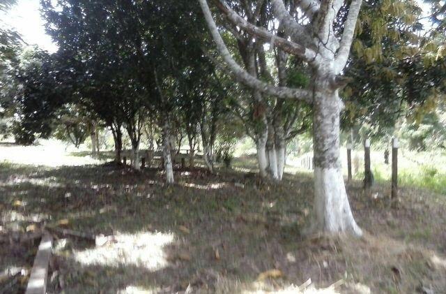 Chácara com 1,4 hectares