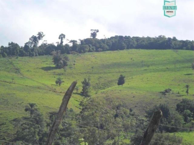 Fazenda Itamaraty com 300 Hectares, potencial para 300 gados, 70 hectares de cacau - Foto 8