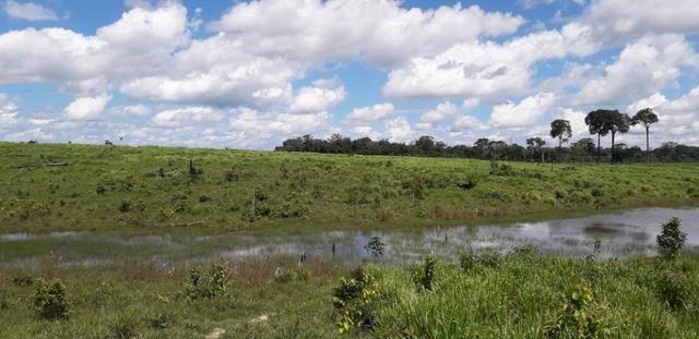 Fazenda em Roraima top - Foto 5