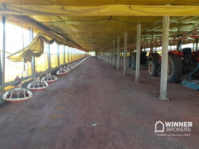Sítio à venda, 242000 m² por R$ 3.500.000,00 - Rural - Mandaguaçu/PR - Foto 12