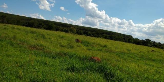 Fazenda - Sítio à venda, Centro - Corinto/MG - Foto 2