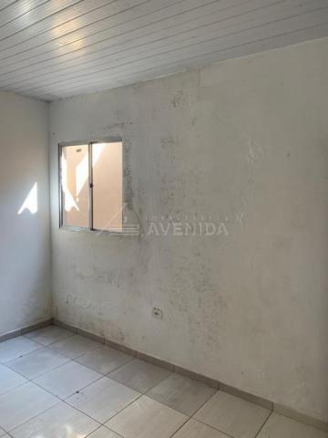 Casa para alugar com 2 dormitórios em Arapongas, Londrina cod:00601.003 - Foto 6