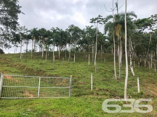 Chácara à venda com 3 dormitórios em Vila nova, Joinville cod:01028884 - Foto 15