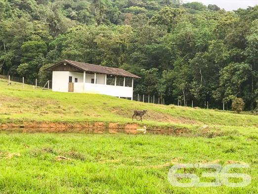 Chácara à venda com 3 dormitórios em Vila nova, Joinville cod:01028884 - Foto 6