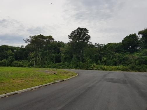 Galpão/depósito/armazém à venda em Reta, São francisco do sul cod:FT255 - Foto 15