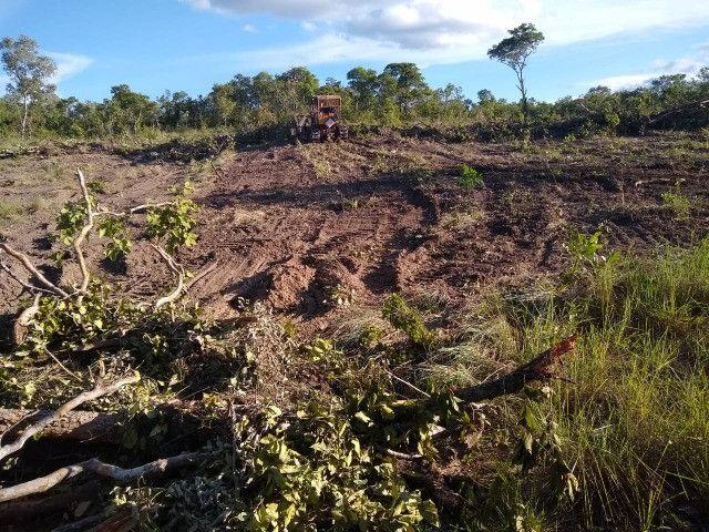 Fazenda Pitomba - 632 Hectares - Conceição do Tocantins - F210210 - Foto 11