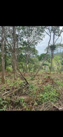 Vende-se terreno na Serra  - Foto 6