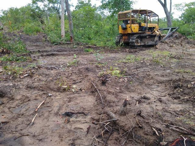 Fazenda Pitomba - 632 Hectares - Conceição do Tocantins - F210210 - Foto 12