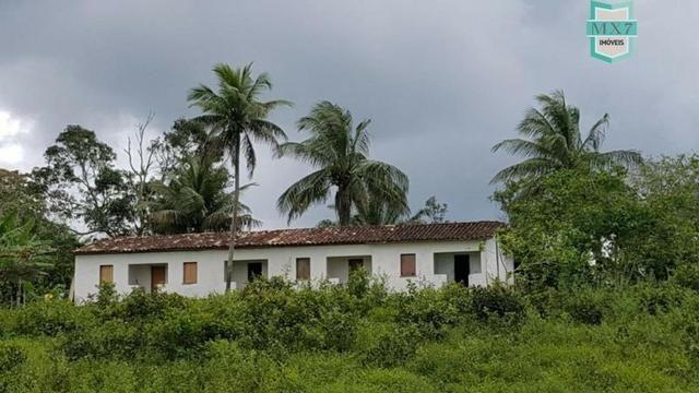 Ubaitaba. Fazenda de 450 Hectares, produção de cacau e gado, completa infraestrutura. - Foto 13