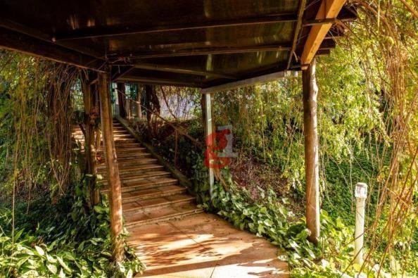 Chácara à venda, 5000 m² por R$ 1.200.000,00 - Jardim Santa Adelaide - Cambé/PR - Foto 7