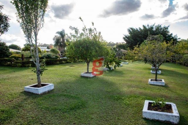 Chácara à venda, 5000 m² por R$ 1.200.000,00 - Jardim Santa Adelaide - Cambé/PR - Foto 13