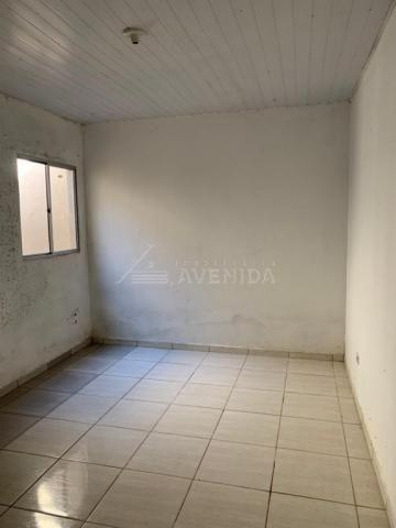 Casa para alugar com 2 dormitórios em Arapongas, Londrina cod:00601.003 - Foto 9