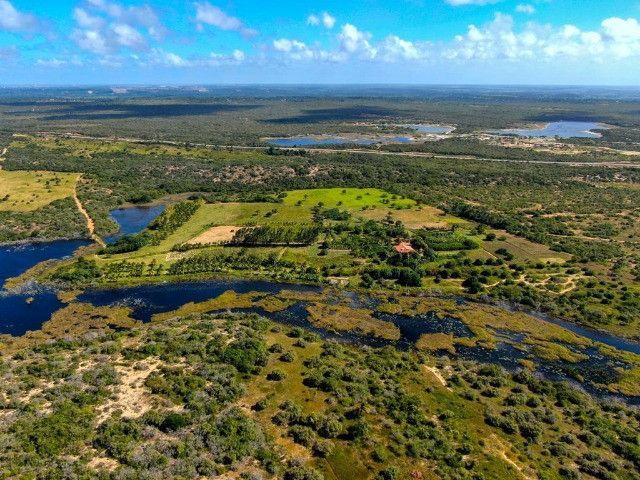Área - Fazenda - Barra Maxaranguape - Foto 2