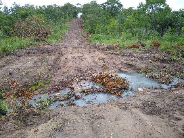 Fazenda Pitomba - 632 Hectares - Conceição do Tocantins - F210210 - Foto 19
