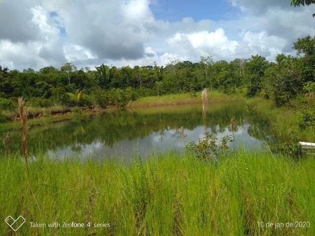 Fazenda no km 42, rumo Humaitá, com 100.00ha - Foto 2