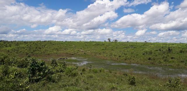 Fazenda em Roraima top - Foto 2
