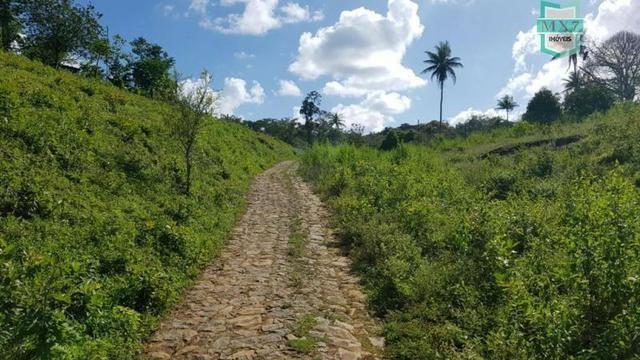 Ubaitaba. Fazenda de 450 Hectares, produção de cacau e gado, completa infraestrutura. - Foto 16