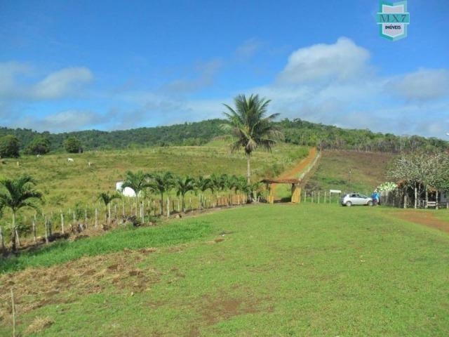 Fazenda Itamaraty com 300 Hectares, potencial para 300 gados, 70 hectares de cacau - Foto 6