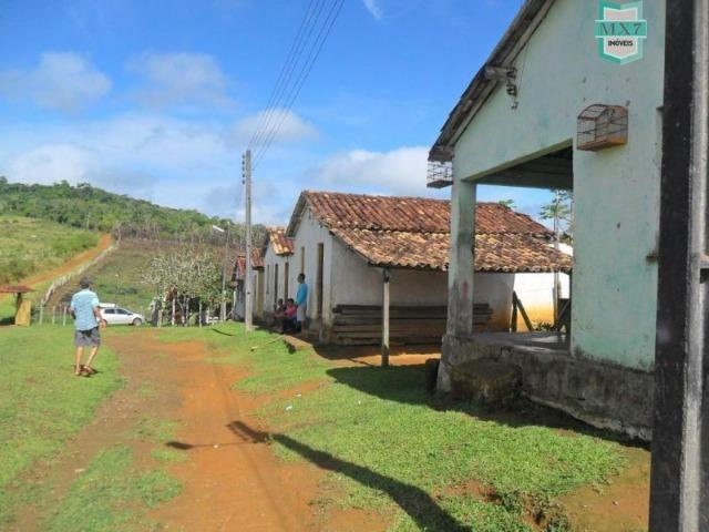 Fazenda Itamaraty com 300 Hectares, potencial para 300 gados, 70 hectares de cacau - Foto 4