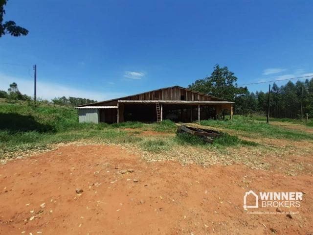 Sítio à venda, 242000 m² por R$ 3.500.000,00 - Rural - Mandaguaçu/PR - Foto 10