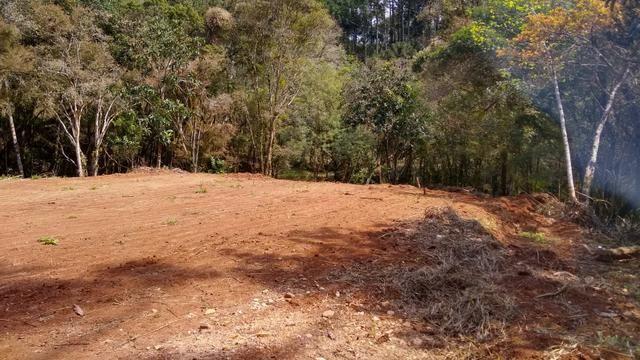 Terra para formação Chacara Campo Largo com luz- 35Km Curitiba