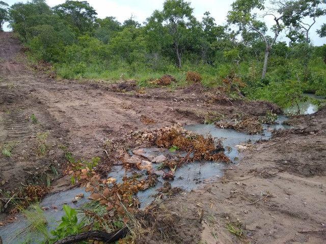 Fazenda Pitomba - 632 Hectares - Conceição do Tocantins - F210210 - Foto 6