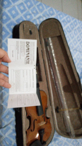 Violino seme novo
