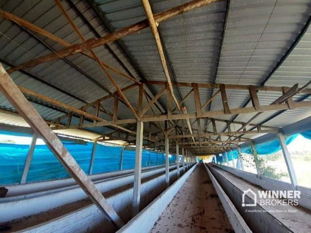 Sítio à venda, 242000 m² por R$ 3.500.000,00 - Rural - Mandaguaçu/PR - Foto 5