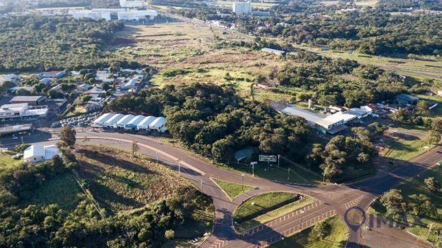 Terreno à venda, 7200 m² por R$ 3.000.000,00 - Jardim Veraneio - Foz do Iguaçu/PR - Foto 4