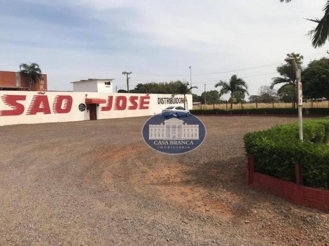 Barracão para alugar, 1500 m² por R$ 12.000,00/mês - São João - Araçatuba/SP - Foto 11