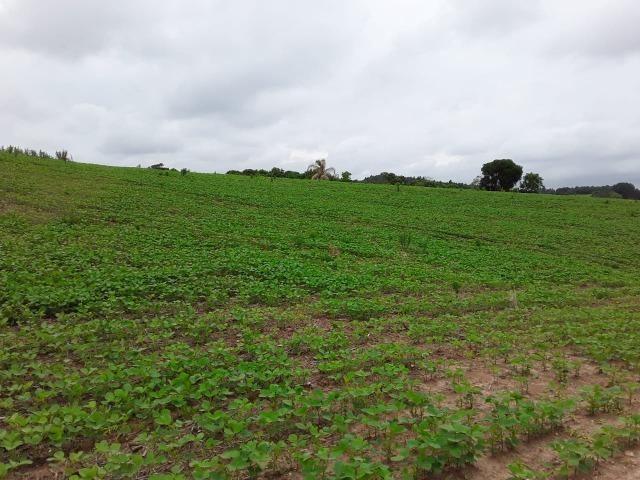 T-AR0032- Área à venda, 852.244 m² por R$ 35.500.000 - PR 423 - Campo Largo/PR - Foto 4