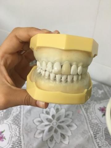 Manequim de dentistica 180,00