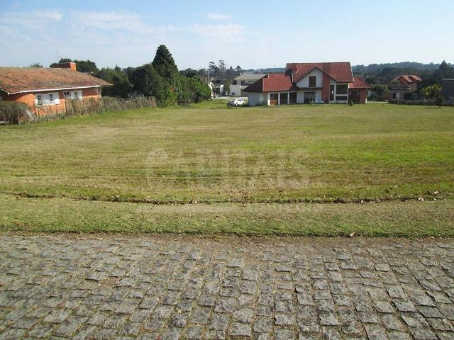 Terreno com 1250m² Campo Largo da Roseira, São José dos Pinhais - Foto 7