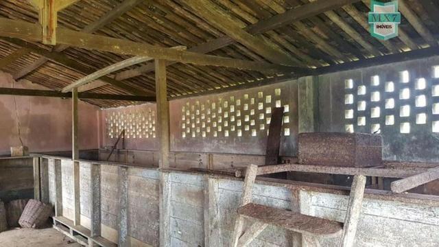 Ubaitaba. Fazenda de 450 Hectares, produção de cacau e gado, completa infraestrutura. - Foto 8